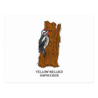 Winnie Woodpecker Postcard