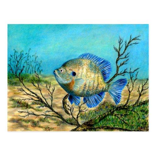 Winning art by  G. Barker - Grade 11 Post Cards
