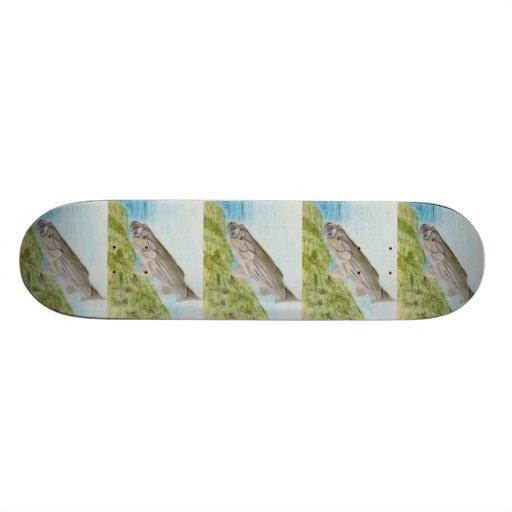 Winning Art By H. Blain Grade 8 Skate Boards