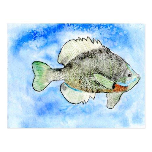 Winning art by  J. Seres - Grade 4 Postcards
