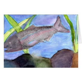 Winning art by  K. VonScheerSchmidt - Grade 5 Greeting Card