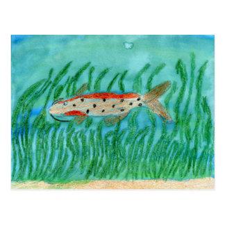 Winning Art By M. Shaffer Grade 5 Postcard