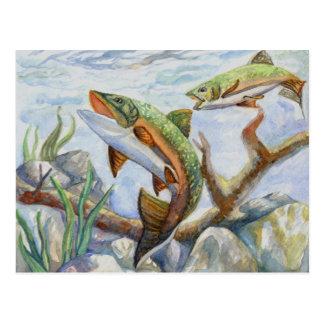Winning Art By M. Yuan Grade 10 Postcard