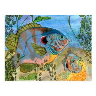 Winning art by  S. Daniels - Grade 11 Postcards