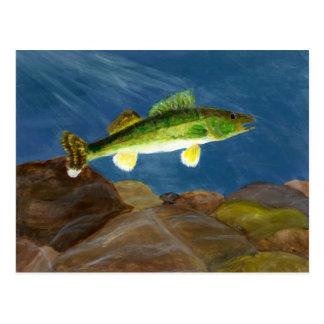 Winning art by  S. Tomko - Grade 8 Postcard