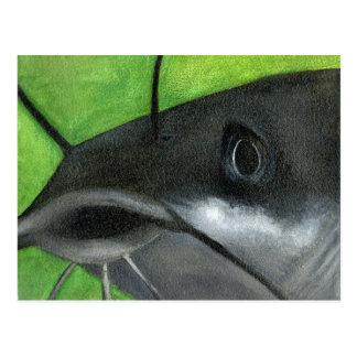 Winning art by  T. Berhorst - Grade 12 Postcard