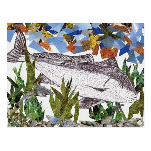 Winning artwork by A. Bryan, Grade 8 Postcard