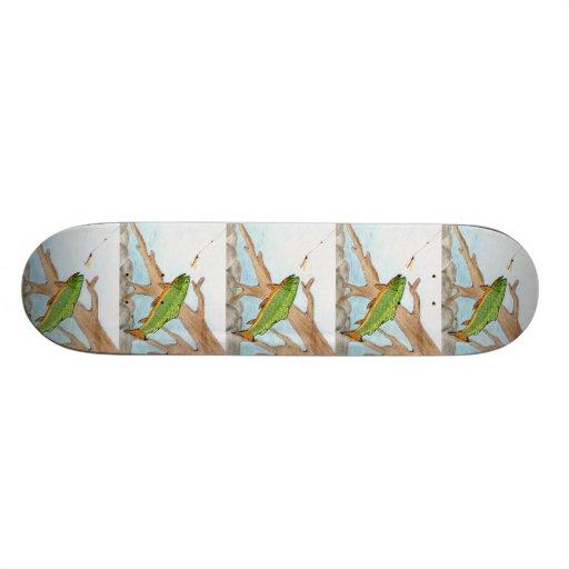 Winning artwork by A. Swirzewski, Grade 9 Skate Deck