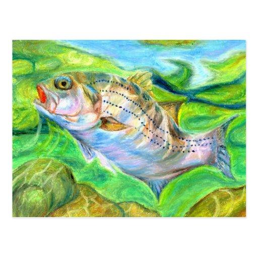 Winning artwork by D. Seo, Grade 6 Postcards