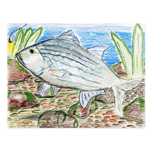 Winning artwork by J. Florida, Grade 6 Post Card