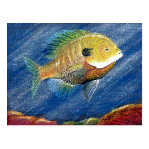 Winning artwork by K. Walker, Grade 12 Post Card