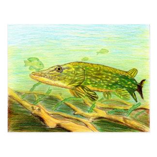 Winning artwork by R. Hinkens, Grade 5 Postcard