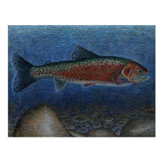 Winning artwork by S Johnson Grade 9 Post Card