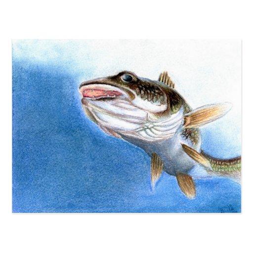 Winning artwork by V. Gindele, Grade 12 Post Cards