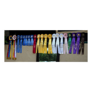 Winning Ways Horse Show Ribbons Poster Print