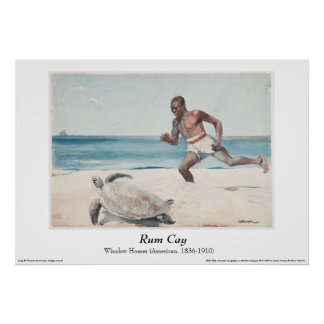 """Winslow Homer - """"Rum Cay"""" Poster"""