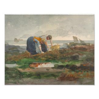 Winslow Homer - The Mussel Gatherers Art Photo
