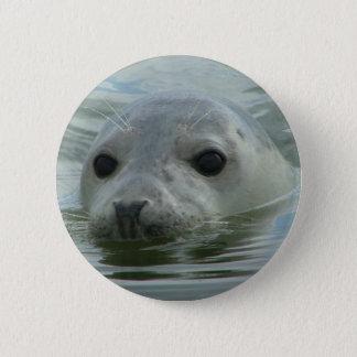 Winston the Seal 6 Cm Round Badge