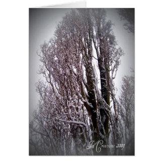 winter09.2a. card