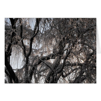 Winter ~ 15 card