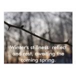 Winter.2009.031, Winter's stillness: reflect an... Postcards