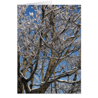 Winter ~ 26 card