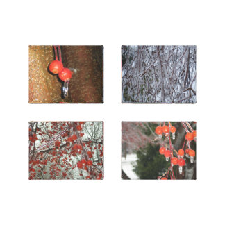 Winter Apples Collage Stretched Canvas Prints
