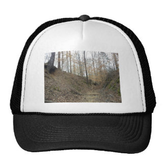 Winter at Sunken Trace Natchez Trace Parkway MS Cap