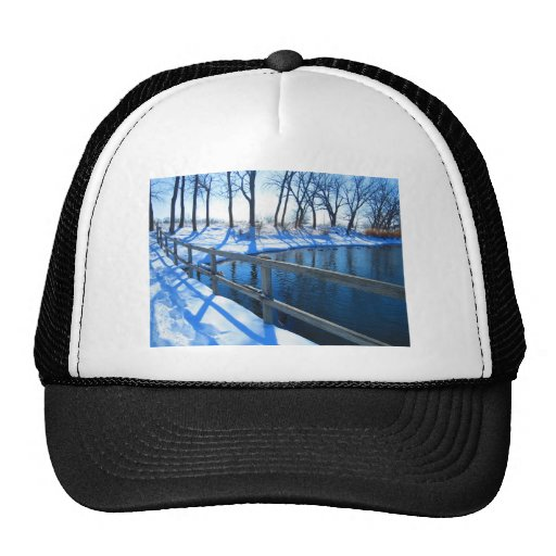 Winter at the park mesh hats