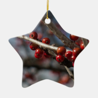 Winter Berries Christmas Ornament