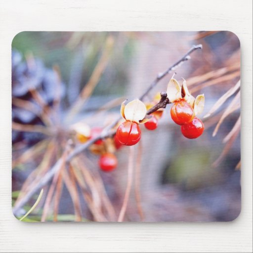 Winter Berries Holiday Mousepad