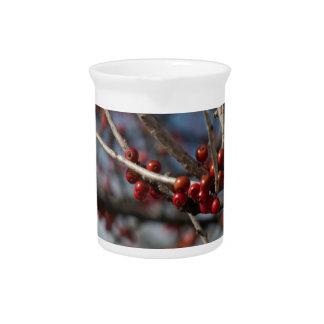 Winter Berries Pitcher