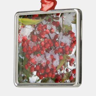 Winter Berries. Silver-Colored Square Decoration