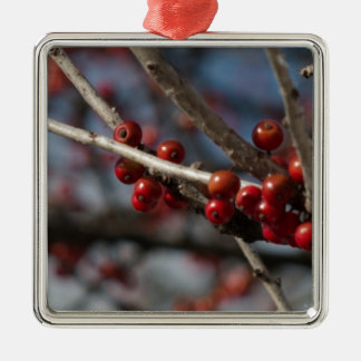 Winter Berries Silver-Colored Square Decoration