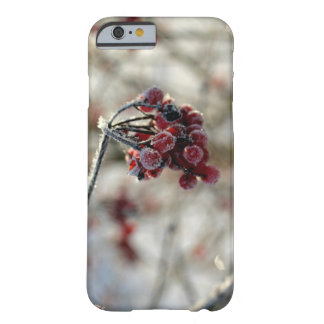Winter berry covers