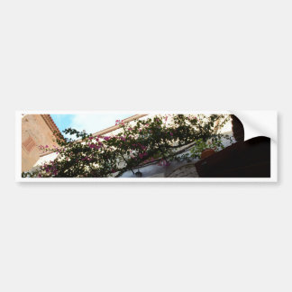 Winter Blooms In Scalea Bumper Sticker