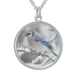 Winter Blue Jay Sterling Silver Necklace