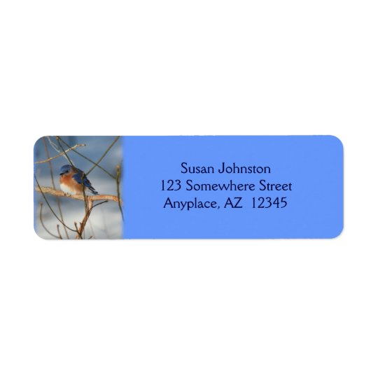Winter Bluebird Animal Address Label