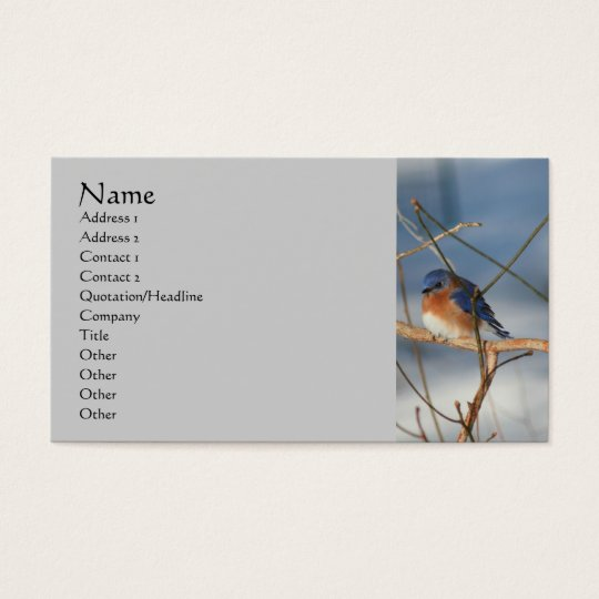 Winter Bluebird Nature Business Card