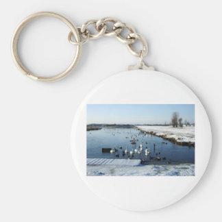 Winter boating lake scene with birds feeding. basic round button key ring