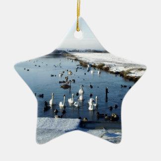 Winter boating lake scene with birds feeding. christmas ornament
