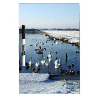 Winter boating lake scene with birds feeding. Dry-Erase board