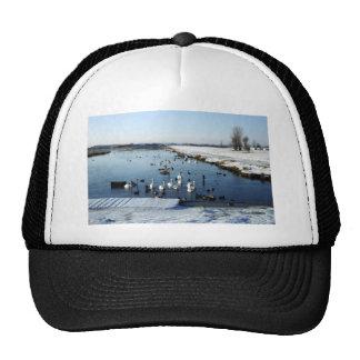 Winter boating lake scene with birds feeding. trucker hats