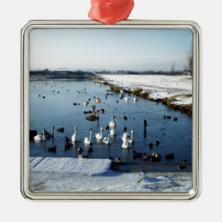 Winter boating lake scene with birds feeding. Silver-Colored square decoration