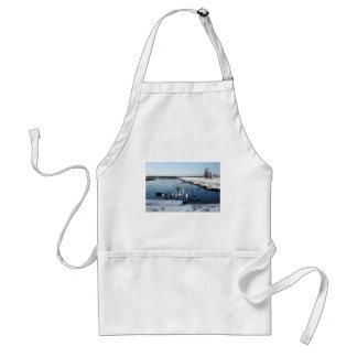 Winter boating lake scene with birds feeding. standard apron