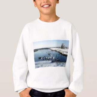 Winter boating lake scene with birds feeding. sweatshirt