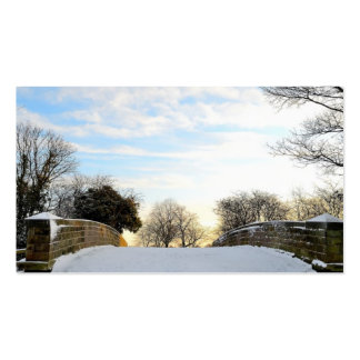 Winter Bridge Pack Of Standard Business Cards