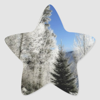 Winter by the Lake Stickers