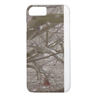Winter cardinal case