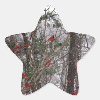 Winter Cardinals Star Sticker